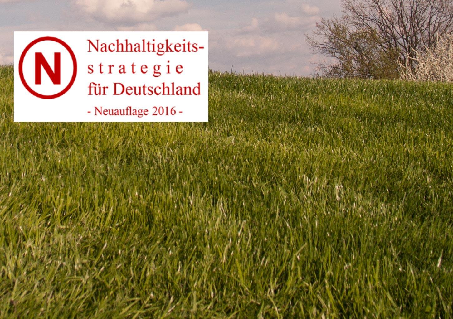Logo der Nachhaltigkeitsstrategie für Deutschland - Neuauflage 2016